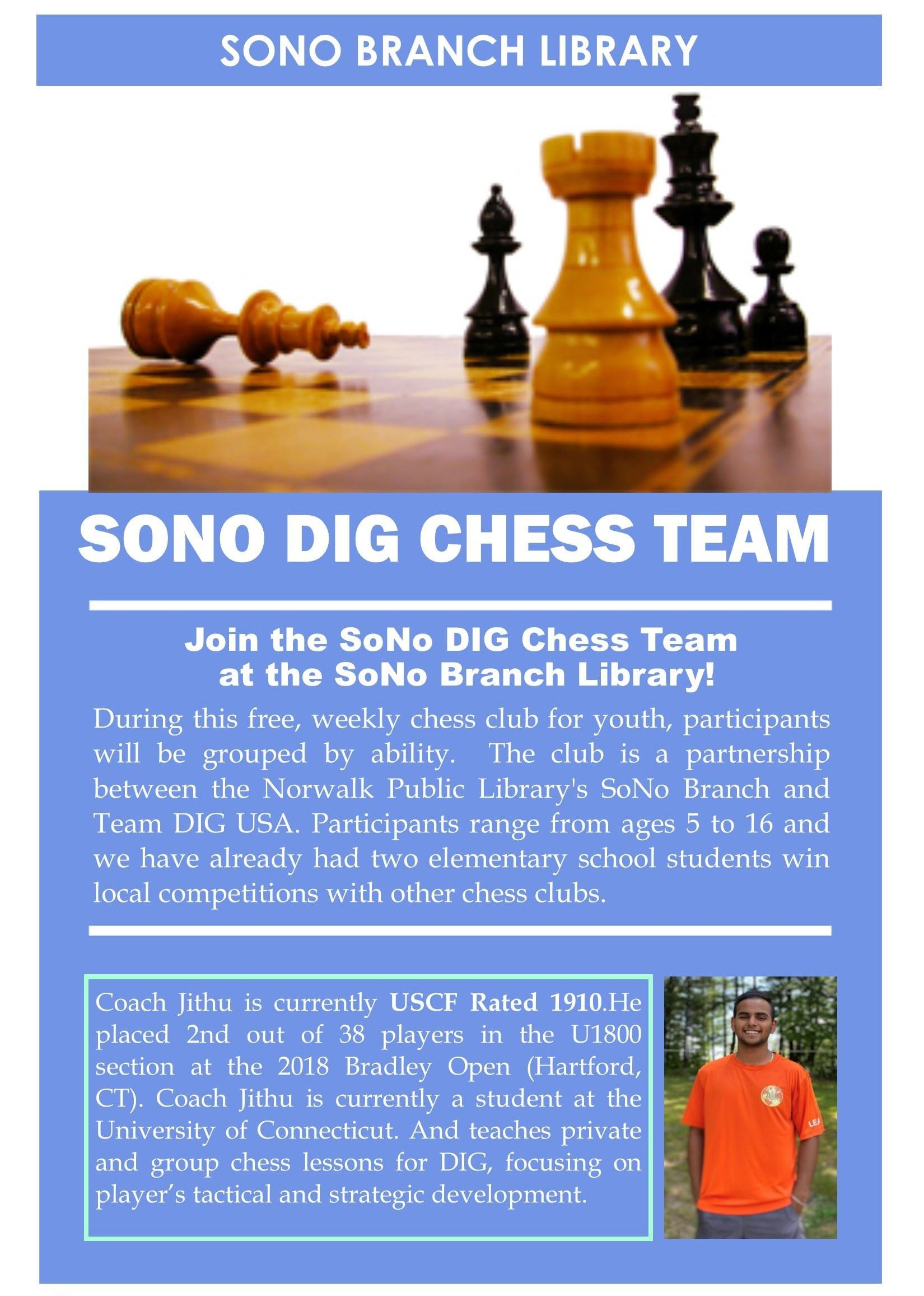 Flyer - CHESS